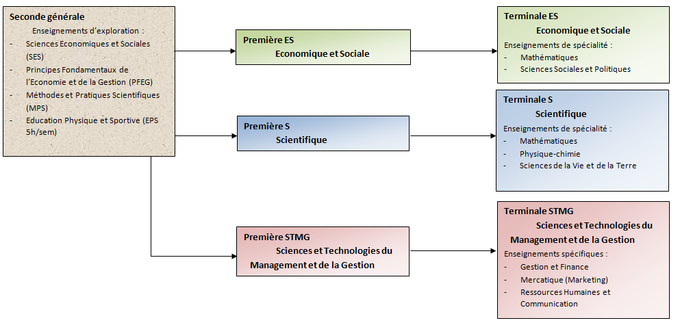structure lycee 2015